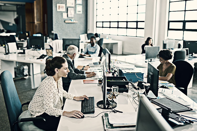 Small business employees in an office
